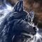 thewolfmaster